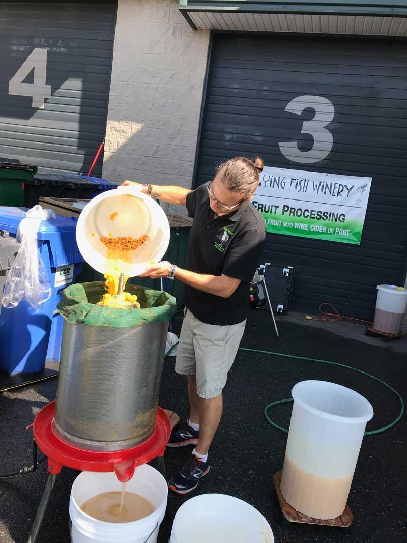 Derek pressing apples for cider